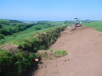 Devon Hedgebank creation